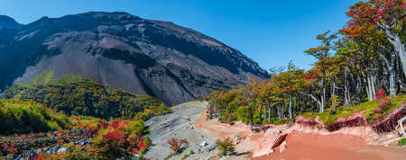 Panoramic view over surreal mountains and forests in Torres del Paine National Park at sunny day and blue sky during golden Autumn, Patagonia, Chile
