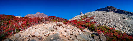 Panoramic view over beautiful Torres del Paine National Park, its Magellanic subpolar lenga forests and high peaks at golden Autumn, Patagonia, Chile