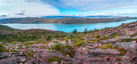 Panoramic view over mountain turquoise lagoon, forests and hills in Torres del Paine National Park at sunny day and blue sky, Patagonia, Chile