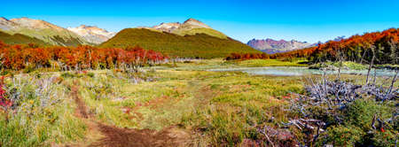 Panoramic view over magical austral forest, peatbogs and high mountains in Tierra del Fuego National Park, Patagonia, Argentina Stok Fotoğraf