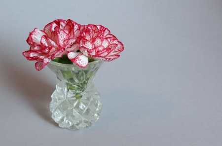 Two red carnations in glass vase with copy space on right