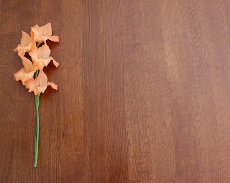 Orange gladiolus stem on wooden background with copy space on right