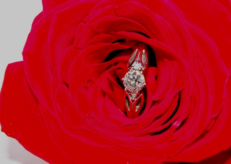 Red rose and diamond wedding ring