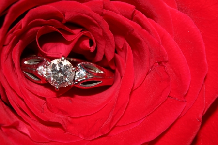 Diamond ring and red rose close-up