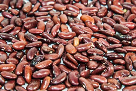 Photos of lentils on a white background. photo