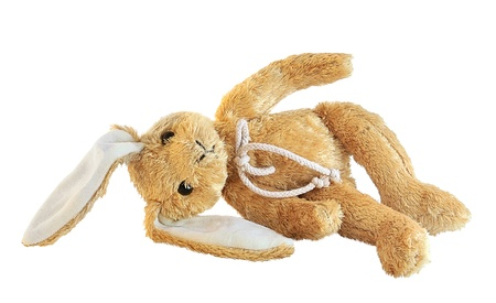 sweet stuff: Plush bunny isolated on white