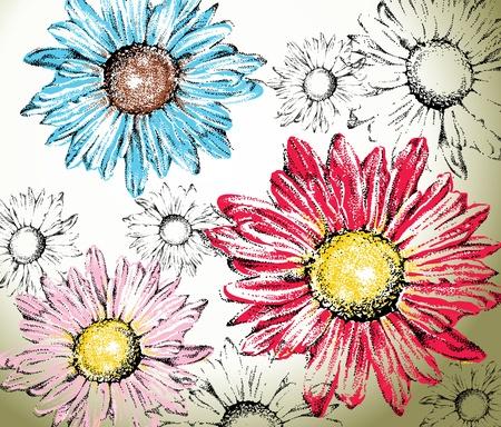 gerbera daisy: Dibujado a mano de fondo flores, margaritas para colorear f�ciles Vectores