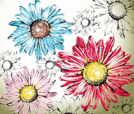 pink daisy: Hand drawn flowers background