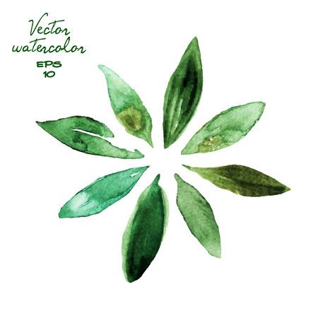 Set van groene aquarelbladeren