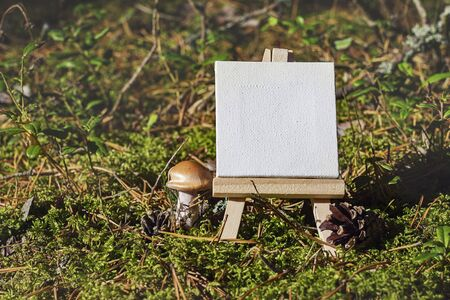countryside: Mini easel with empty canvas on seasonal forest moss and grass background. Macro