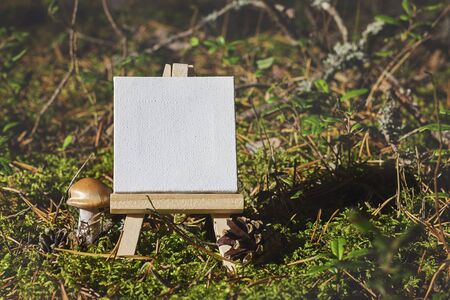 seasonal forest: Mini easel with empty canvas on seasonal forest moss and grass background. Macro
