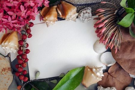 Empty paper note, view from above, framed sea shells, tropical flowers, leaves, berries. Caribbean vacation theme. Toned. Stock Photo