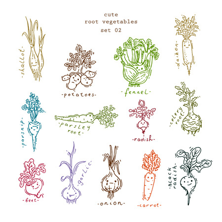 root vegetables: Set of cute smiling root vegetables Illustration