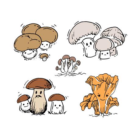the fungus: Set of mushrooms Illustration