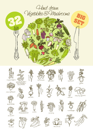 Big set of hand drawn vegetables