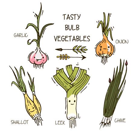 multivitamin: cute smiling bulb vegetables Illustration