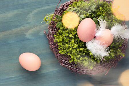 Easter eggs in the nest on painted wooden background. Easter fest decor. Standard-Bild