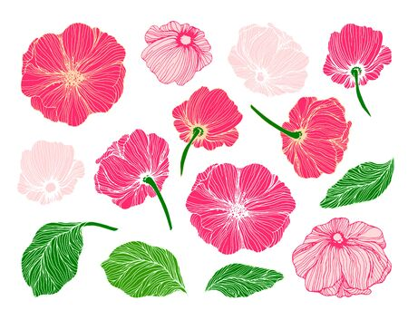 Collection of hand drawn flowers and leaves for floral composition building Standard-Bild