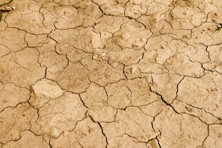 arid: arid earth