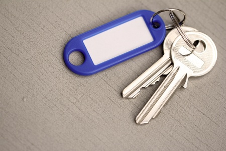 key fob: keys with key fob