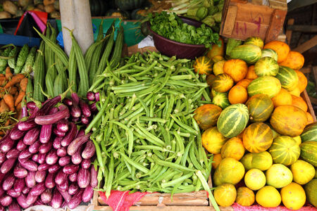 colorful vegetables display photo