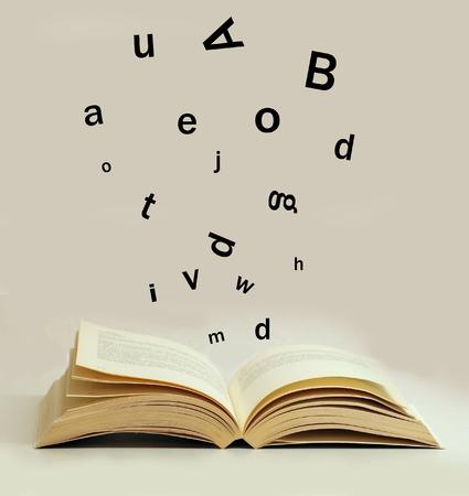 dictionary: magic book