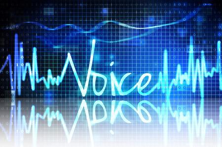 voice verification