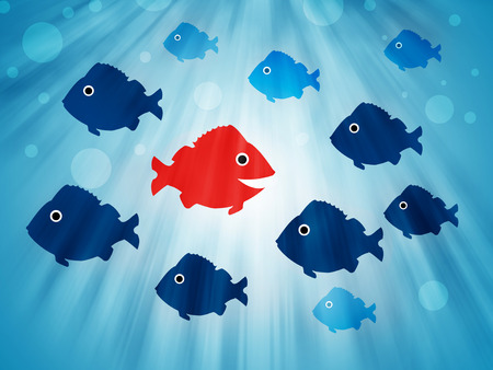 way out: fish swimming opposite direction Stock Photo