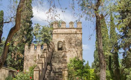 tower of medieval castle Standard-Bild