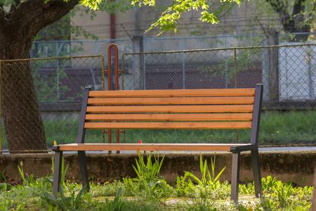 empty bench in park under tree Standard-Bild