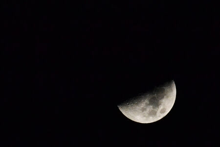 moonbeam: moon in the night
