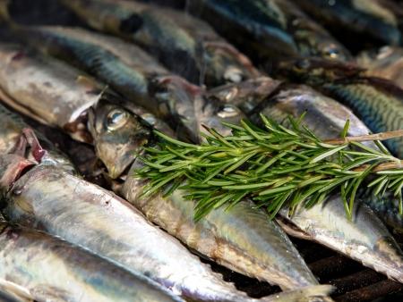 vis op de grill met rozemarijn en olijfolie