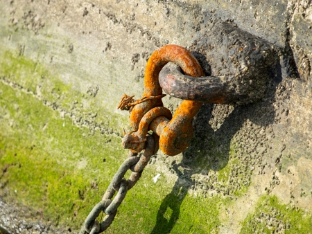 old rusty chain in the port photo