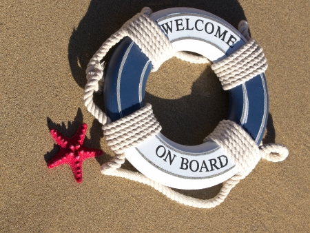 safe belt with red sea starfish photo