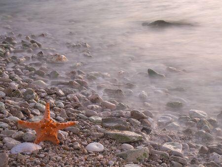 Summer vacations - starfish on sunset sea sand beach Stock Photo - 17069094