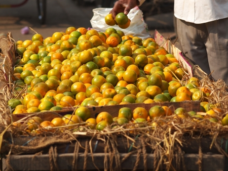 ambulant: oranges selling on the streets of new delhi      Stock Photo