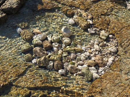 small clear sea lake on the stone beach photo