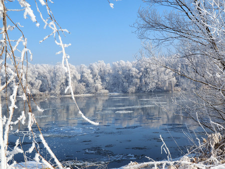 Winter landscape, river under the ice and tree branches covered with white frost