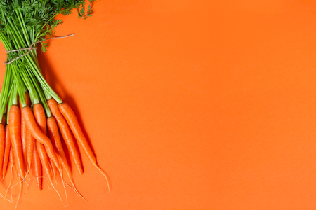 Bunch of whole fresh raw carrots with green leaves on orange background. Vegan, vegetarian, farm market or healthy food concept. Top view with copy space for text.