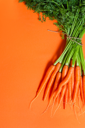 Bunch of whole fresh raw carrots with green leaves on orange background. Food concept. Copy space for text.