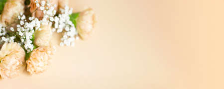 Beige carnation flowers bouquet on light beige background. Selective focus. Holiday decoration concept. Place for text. Banner for website. Фото со стока