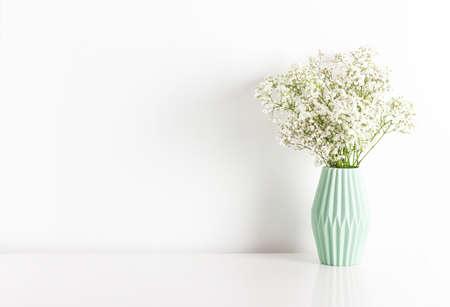 White gypsophila (baby-breath) flower in light green ceramic vase on white wall
