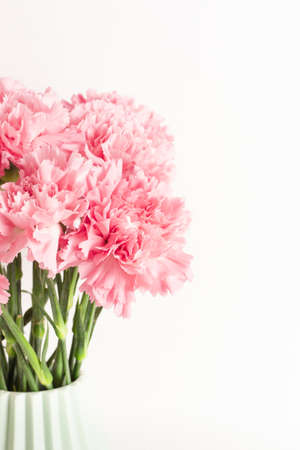 Pink carnation in light green ceramic vase on white background. Place for text.
