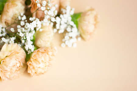 Beige carnation flowers bouquet on light beige background. Selective focus. Holiday decoration concept. Place for text. Фото со стока