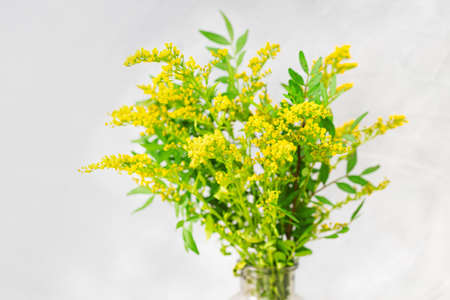 Bouquet of fresh yellow flowers ion light gray background. Selective focus.