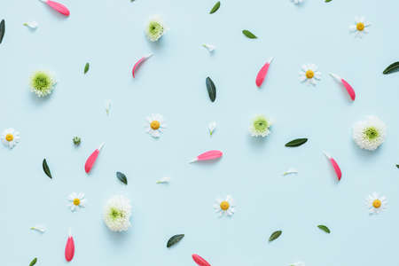 Flowers pattern background. Flowers, petals and leaves on light blue background.