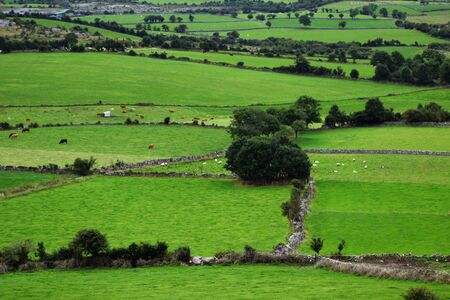 burren area Ireland Stock Photo