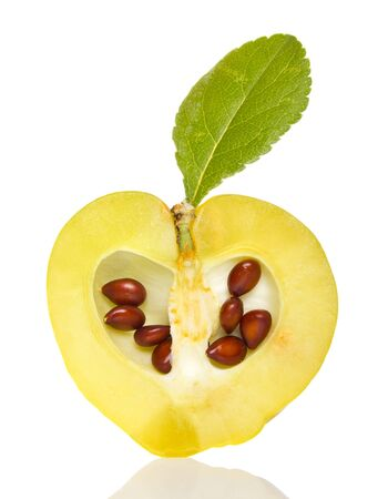 membrillo: rodajas de membrillo pequeño con hoja verde y las semillas aisladas en blanco