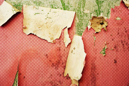 grunge weathered wall with old peeling wallpaper  Stock Photo - 12410760