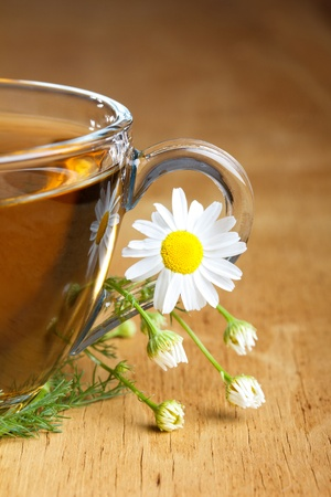 chamomile tea: herbal camomile tea  Stock Photo
